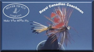 Tied with Silver Tip Fly Company Canadian Wings